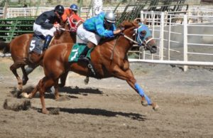 White Pine County Fair - Horse Races @ Ely | Nevada | United States